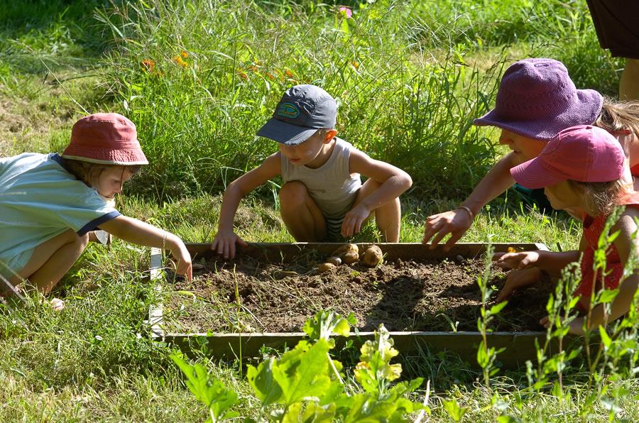 Le jardin pour enfants for Le jardin qui dit non